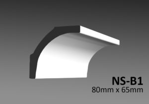 NS-B1